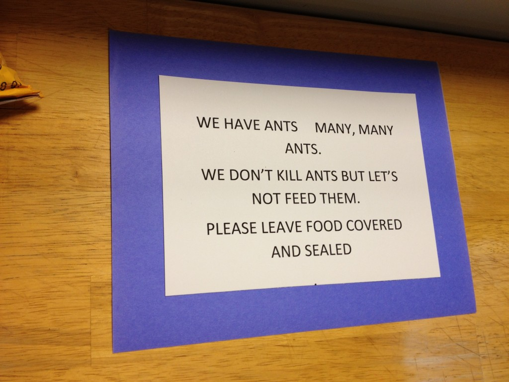 A note in the kitchen.  Buddhists don't believe in doing harm to living things.  This includes ants in the kitchen.